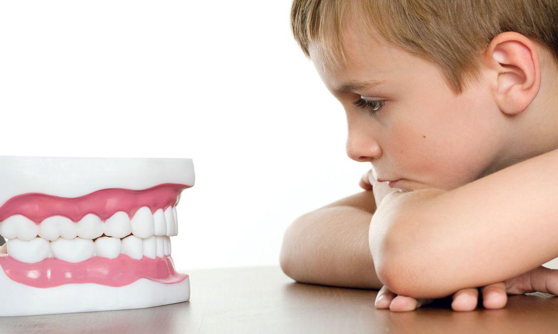 Фото зубов у детей до 1 года