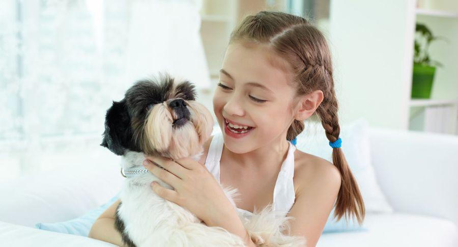 Домашние животные защитят детей отожирения иаллергии