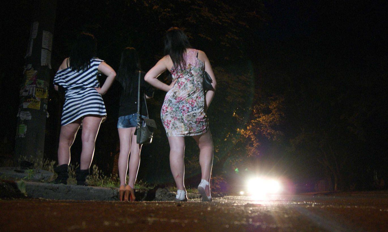 Ночные Бабочки В Чебоксарах