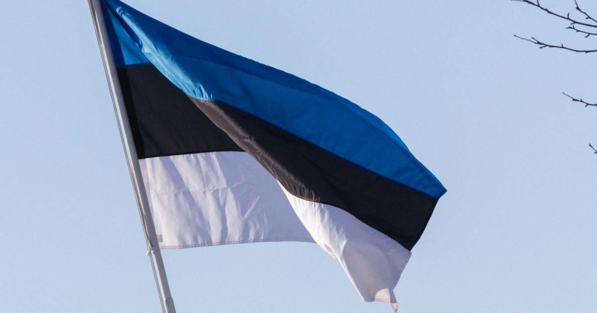 73c04fe3220 Homme on Eesti lipu päev - Uudis.eu