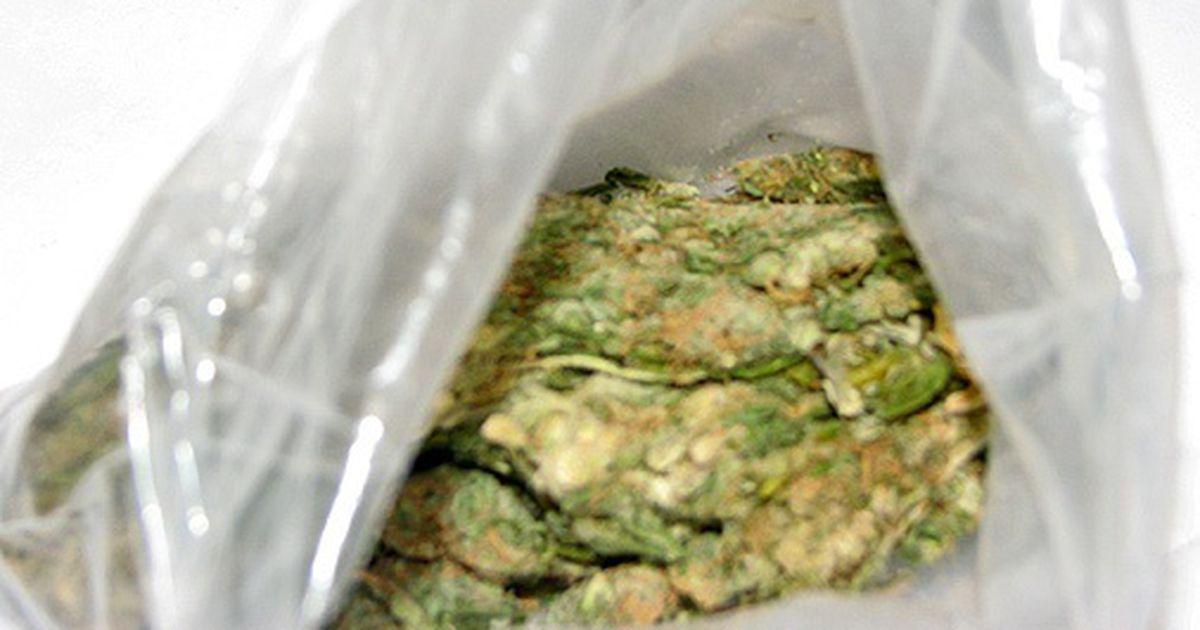 Легализована ли марихуана в калифорнии чехлы на телефон конопля