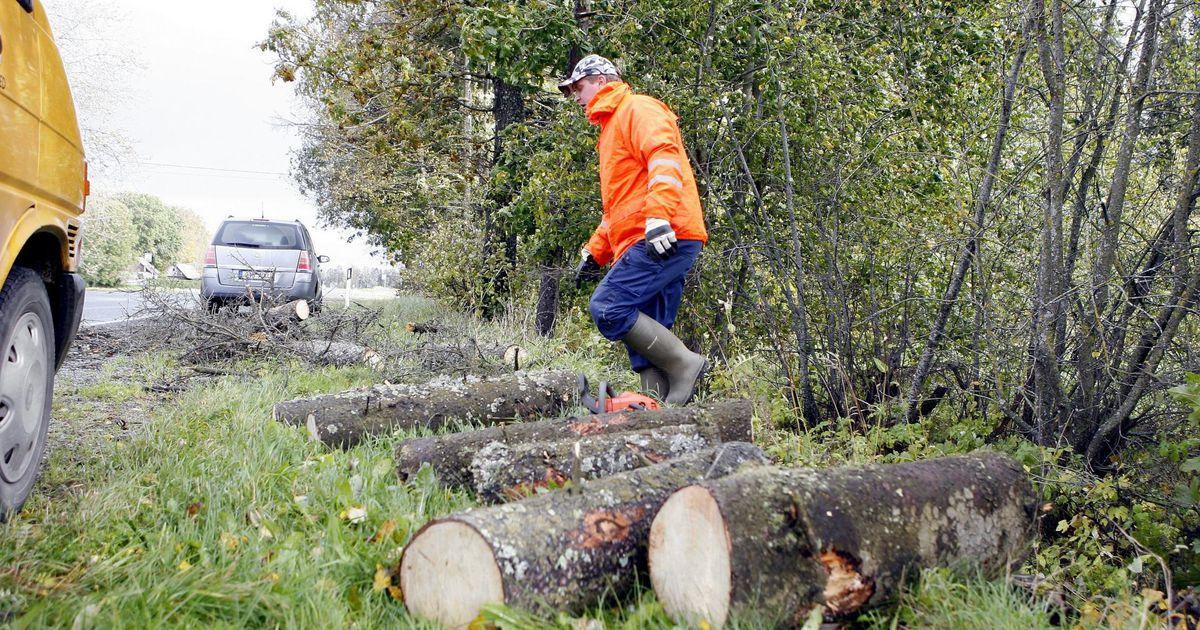 Päästjad eemaldasid teedelt äikesetormis langenud puid
